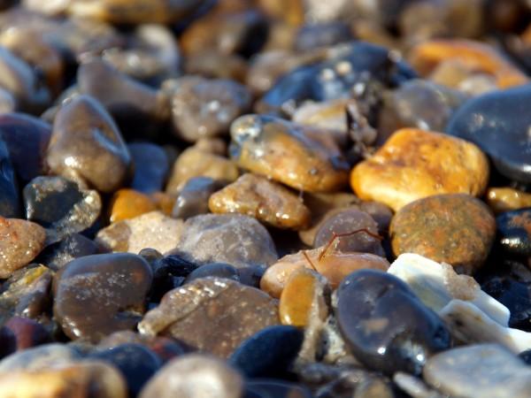 et hav af sten