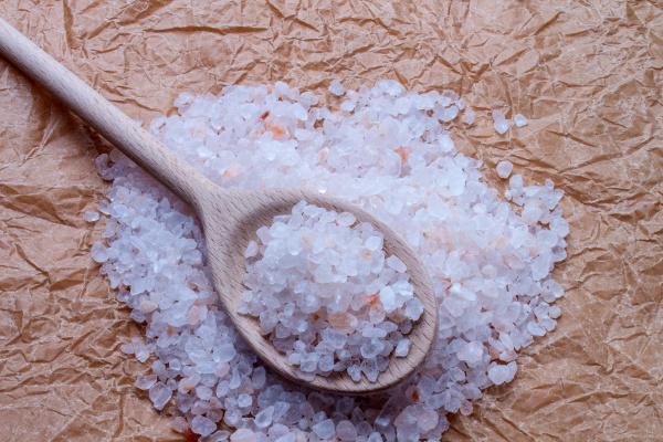 salt grov med traeske