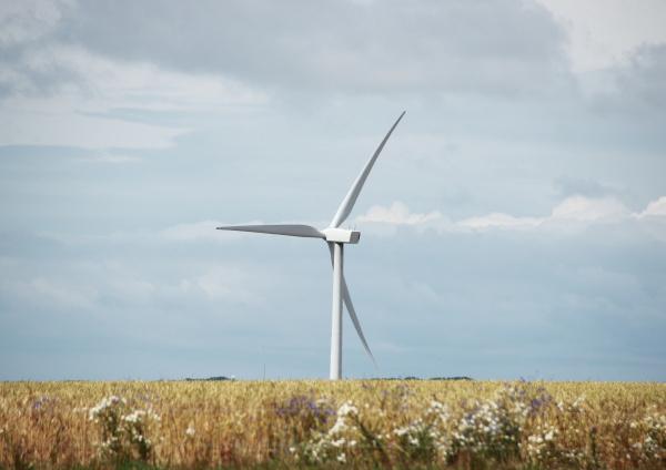 miljo tilvejebringelse vindmolle produktion udvinding iscenesaettelse