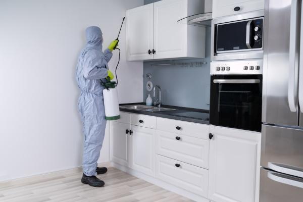 skadedyrsbekæmper, i, sprøjtning, af, pesticid, i - 28215110