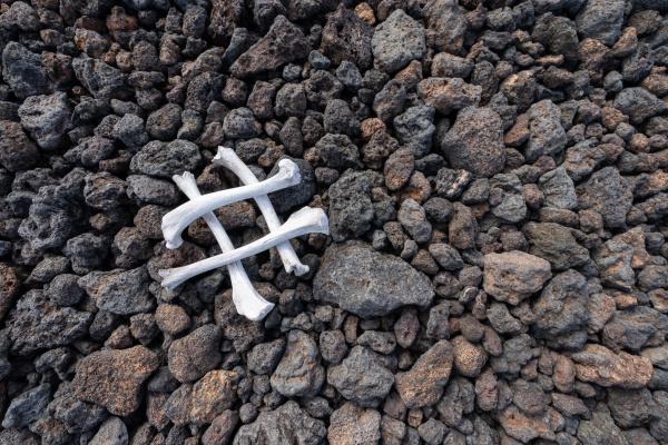 knogler, på, sten - 28218169