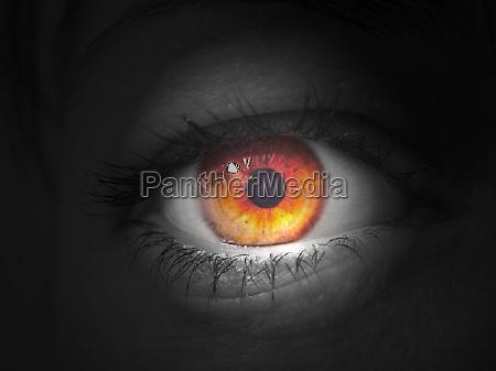 eye spot