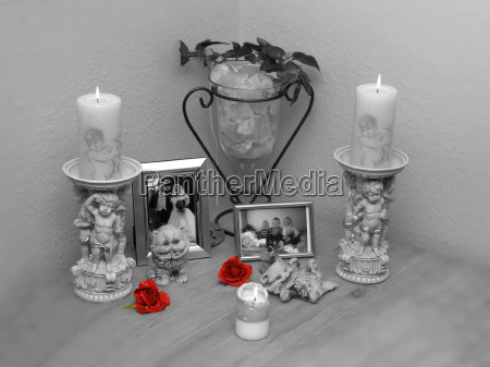 privat blomst rose plante romantisk bryllup