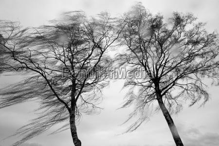 vind og regn