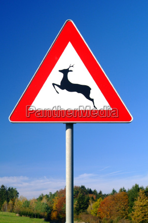 camino de la travesia signo ciervos
