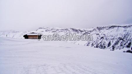 hus bygning sport trae traeer bjerge