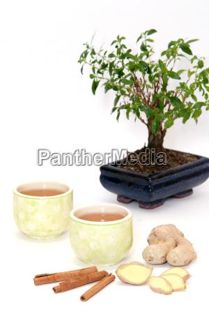 gron te og bonsai