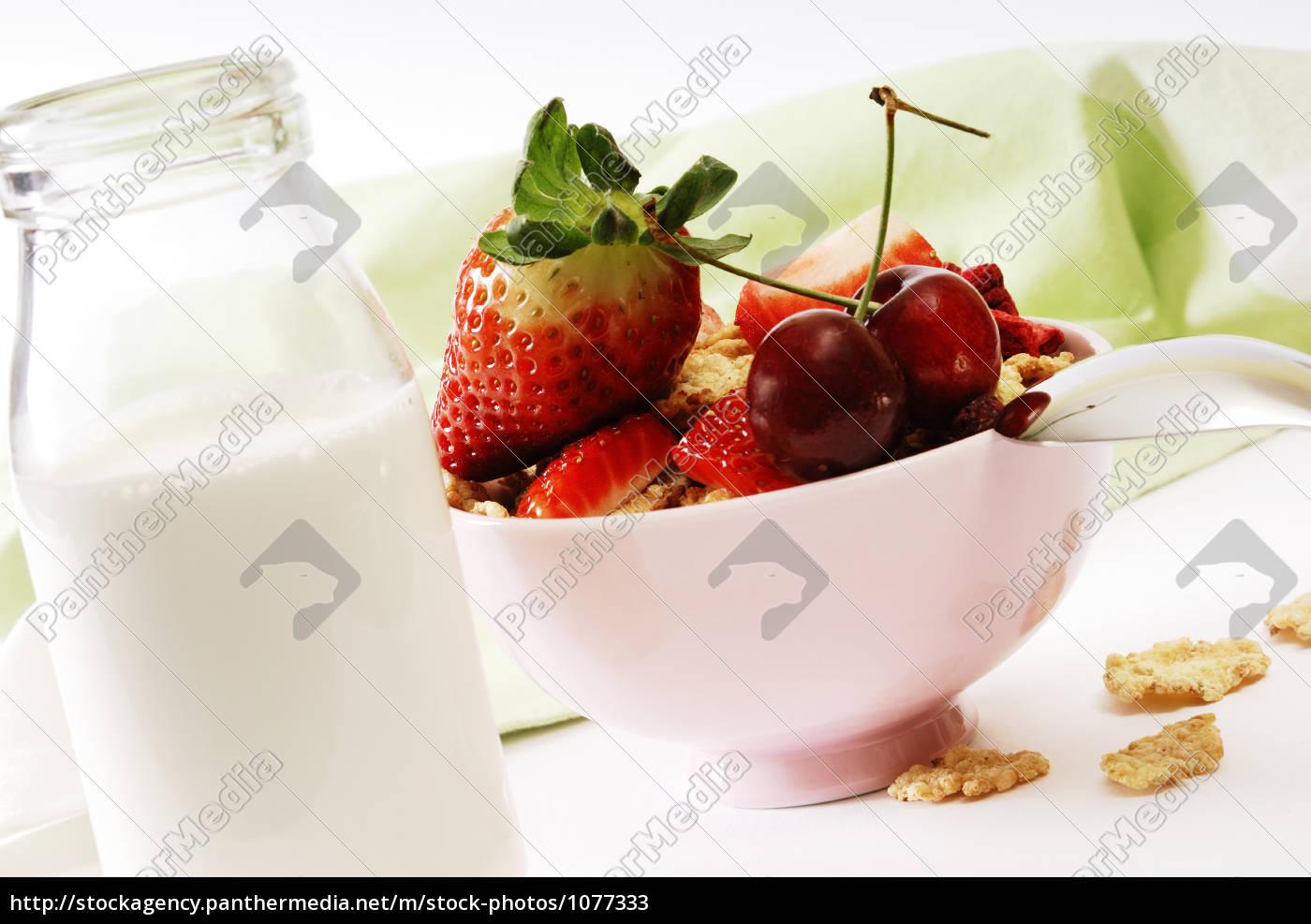sund, morgenmad - 1077333