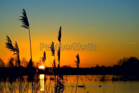 solnedgang over vadomrade
