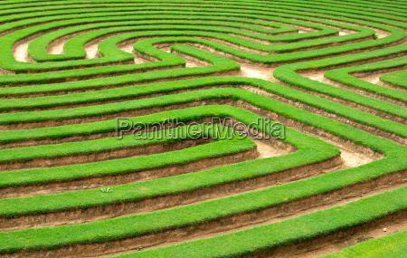 graes labyrint