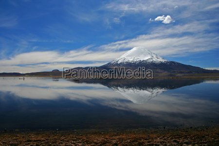 volcano parinacota lago chungara
