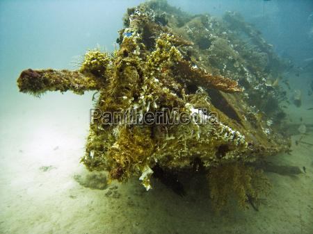 asien undersoisk mystiske dive dykning vrag
