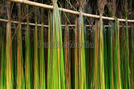 reed to dry