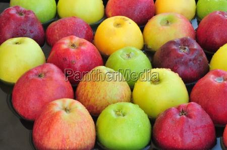 frugt traefrugt juice saftige organiske aeble