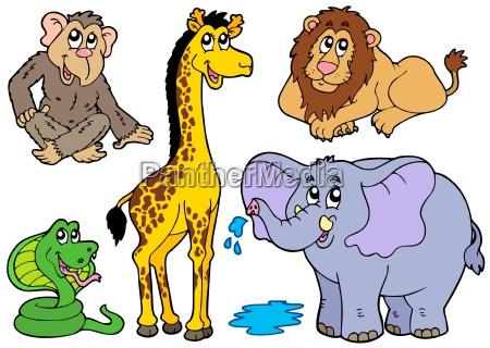 forskellige afrikanske dyr