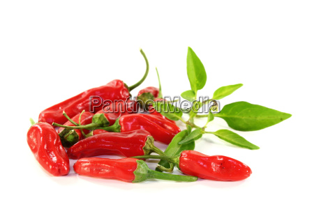 spice peppers