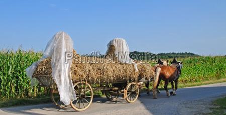 farmers idyll i chiemgau