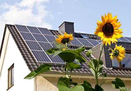 solceller pa taget bag solsikke