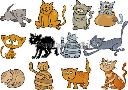 tegneserie katte saet