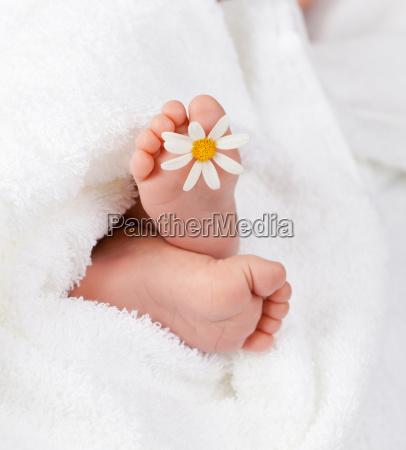 dejlig spaedbarn fod med lille hvid