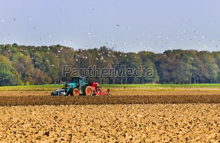 agricultura campo colheita trator arado pais
