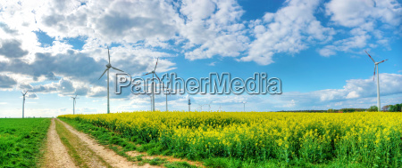 raps landbrug vindkraftvaerk udsigt udsyn vue