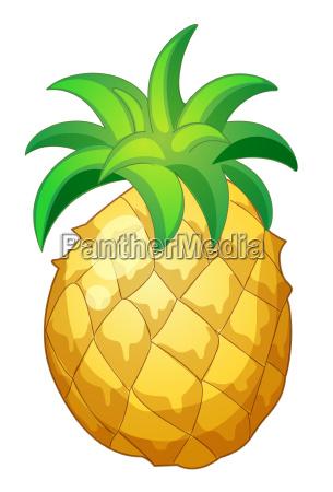 ilustracao da fruta
