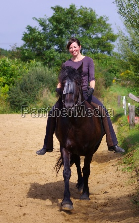 riding on the friesian horse in