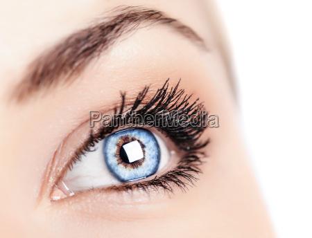 kvindelige bla ojne