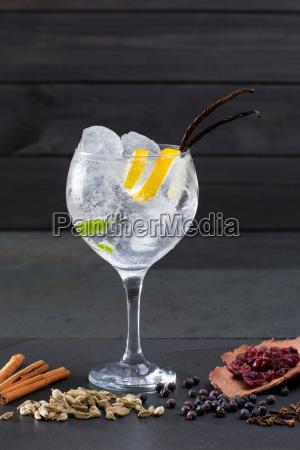 gin tonic cocktail med ice vanilla