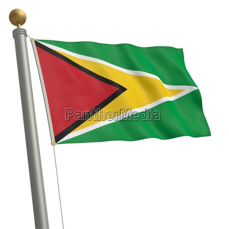 amerika fane flag sydamerika mast guyana