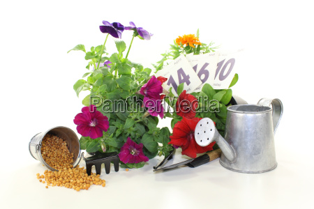 fertilizer with garden utensils