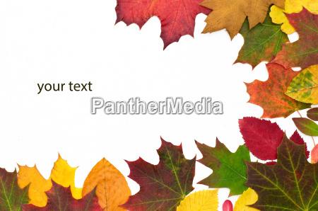 efterarsfarver yourtext