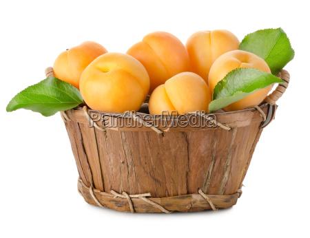 abrikoser, i, en, kurv, isoleret - 10122745
