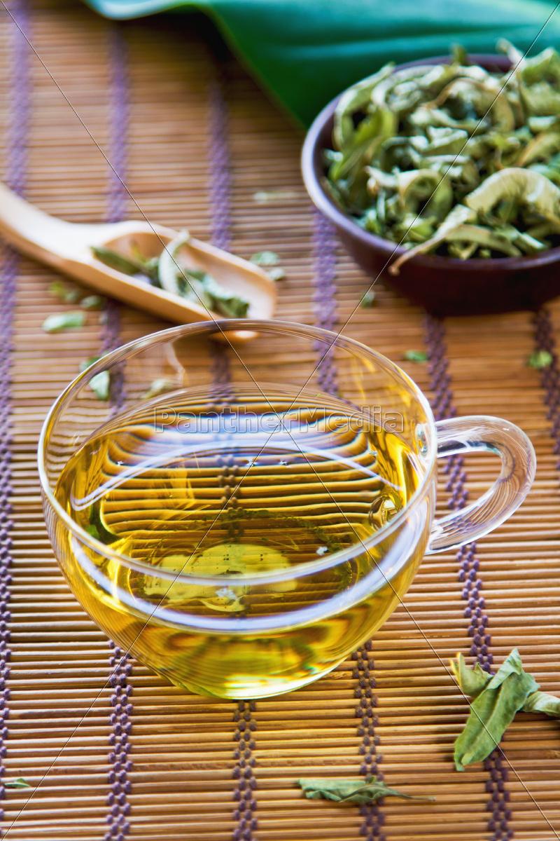 verveine, te, eller, verbena, tea - 10337405