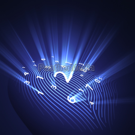 fingerprint security digital