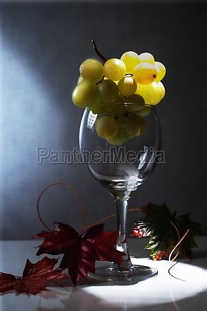 drikke drukket vin alkohol glas vinglas