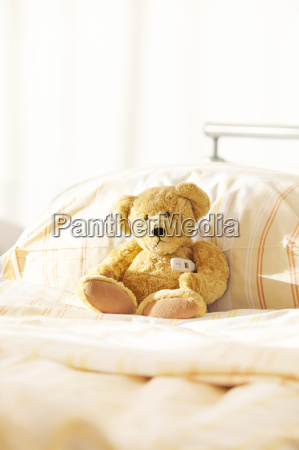 bear hospital bed teddy
