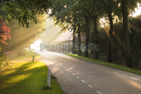 dutch country road and farm with