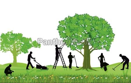 havearbejde planter og beskaering