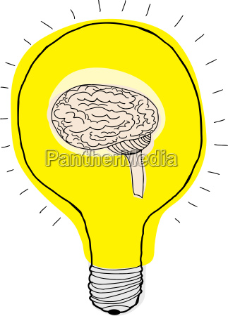 brain i paere
