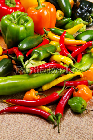 chili pepper stadig liv