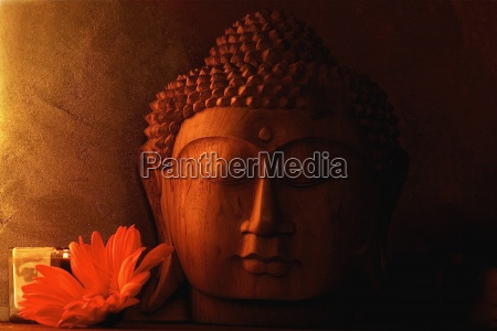 detalje trae buddha hoved
