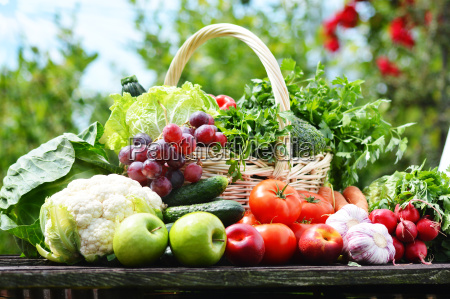 friske okologiske grontsager i flettede kurv
