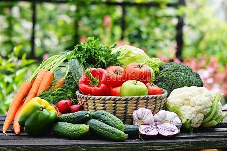 friske okologiske grontsager i kurve i