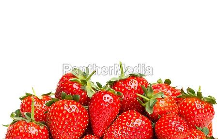 frugt traefrugt jordbaer baer reklameplads