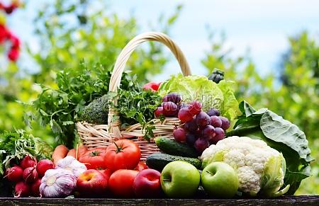 udvalg af friske okologiske grontsager i