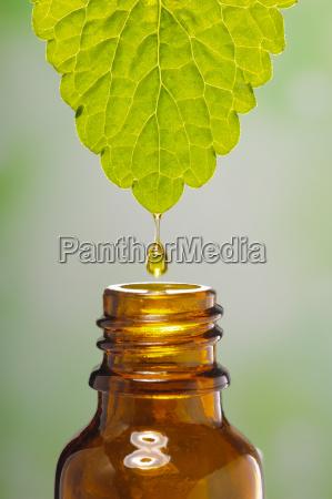alternativ medicin med ekstrakt af en
