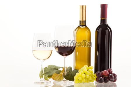 rodvin og hvidvin med druer og
