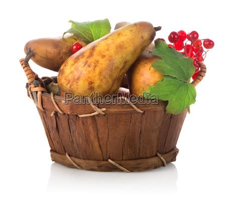 mad levnedsmiddel naeringsmiddel fodevare objekt sundhed